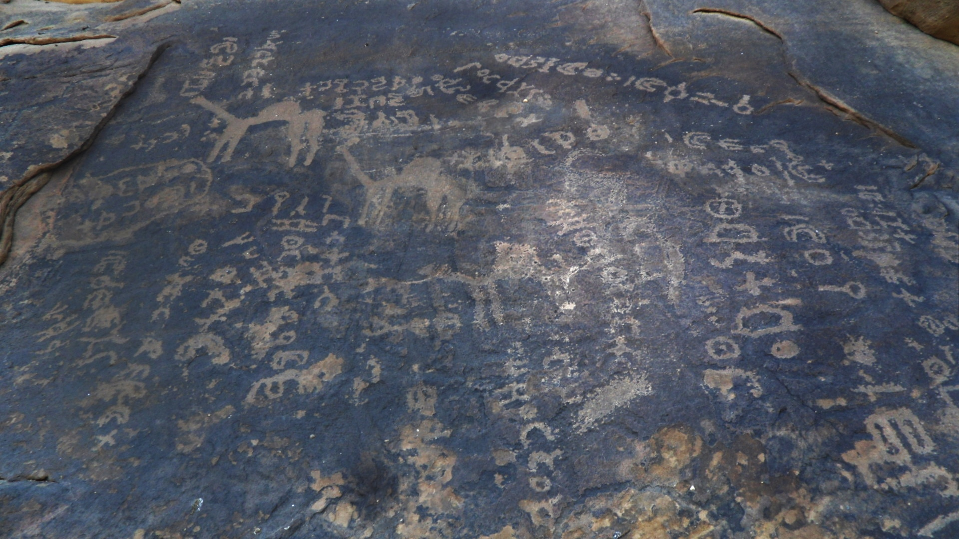 Thamudic inscriptions probably dating from the caravan trade time (photo: Florent Egal)