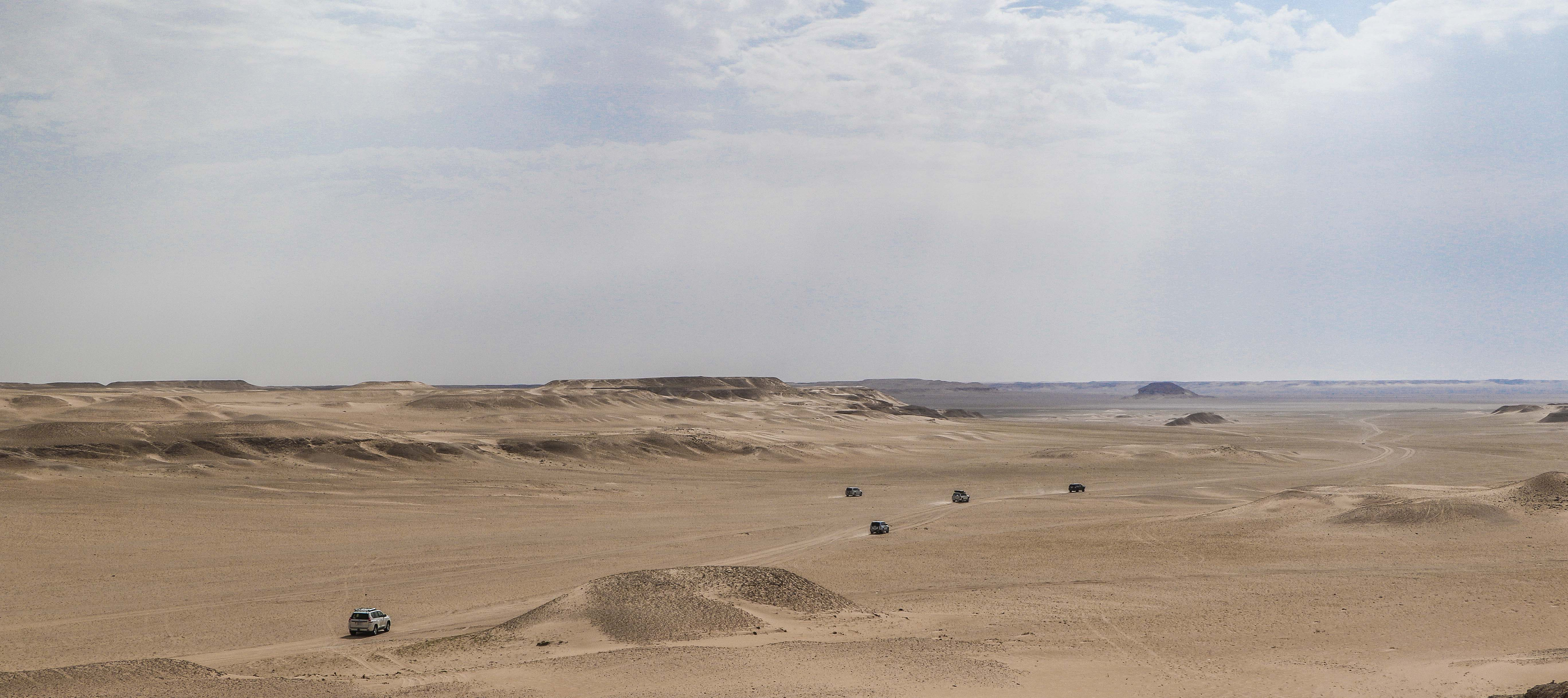 Typical landscape of Al-Ahsa Region with its wonderful shades of limestone (photo: F. Egal)