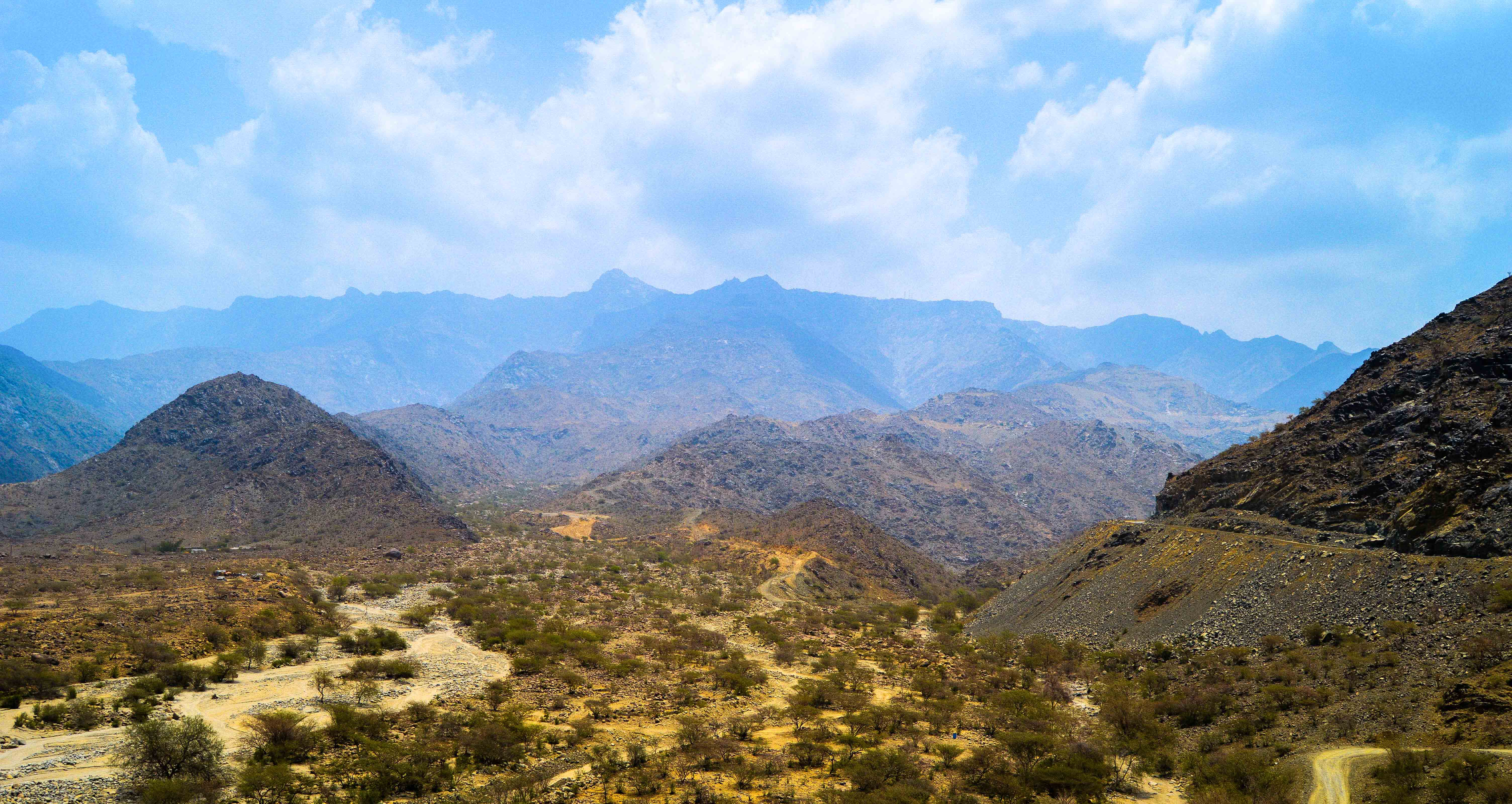 Mountains and greenery in Al-Bahah Province (photo: Alan Morrissey)