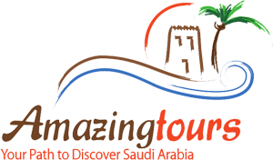 LOGO - Amazing Tours